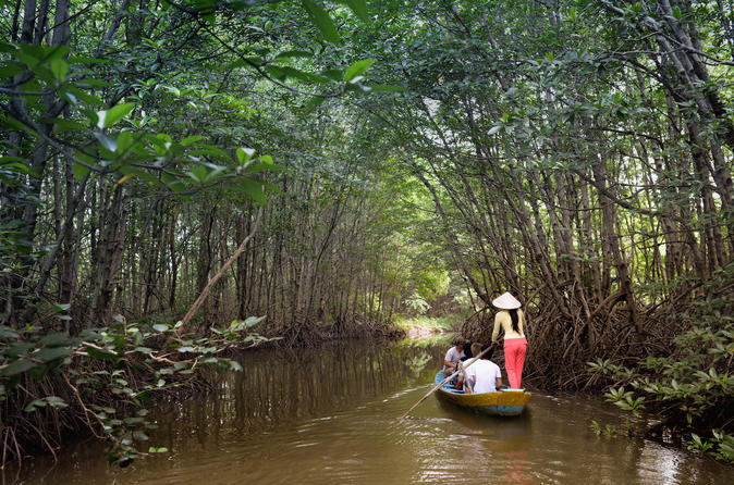 Can gio biosphere reserve tour by luxury speedboat in ho chi minh city 427776