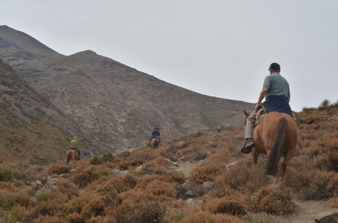Andean Horse Ride Yerba Loca Sanctuary-Small groups and private tours from Santiago