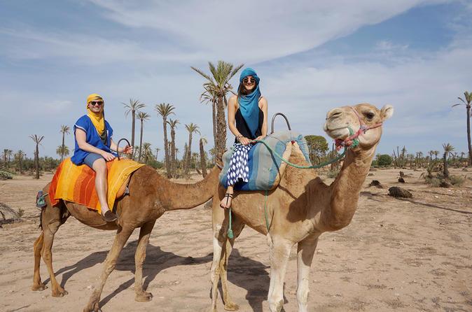1-Hour Palm Grove Camel Ride - Marrakesh