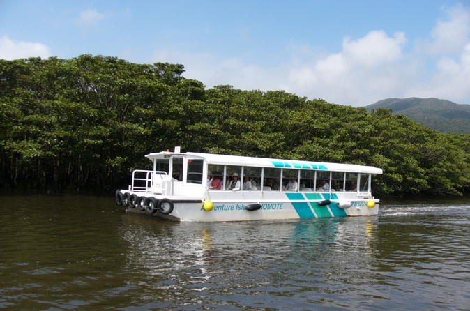 Iriomote Island and Yubu Island Tour