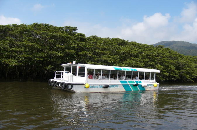 Iriomote Island and Yubu Island Tour with Optional Underwater Boat Tour