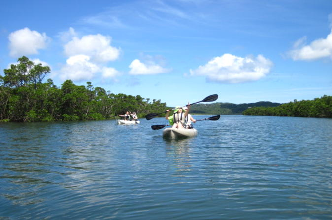 Iriomote Island Kayaking Eco-Tour Including Sangara Falls Hike