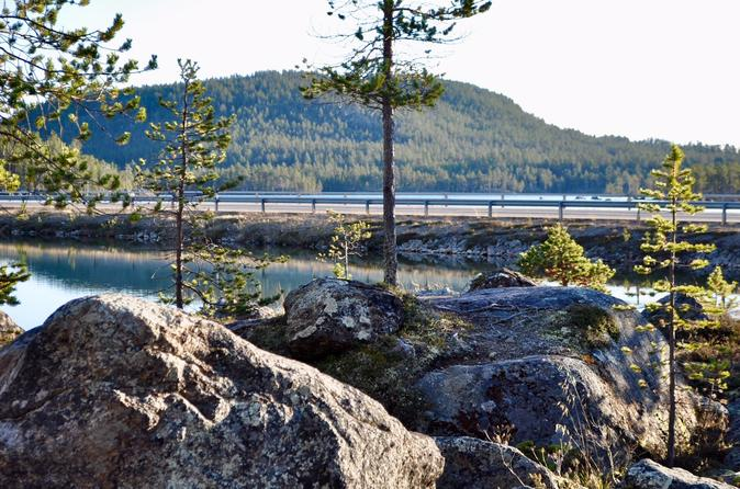 Midnight Sun Tour With Picknick - Rovaniemi