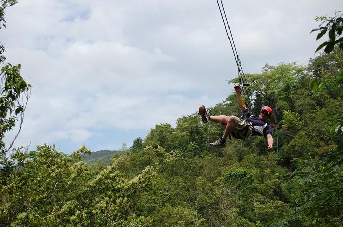 Montego bay ultimate zipline adventure in montego bay 169089