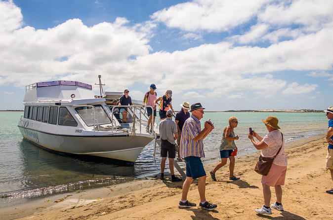 Coorong Discovery Cruise - Mclaren Vale
