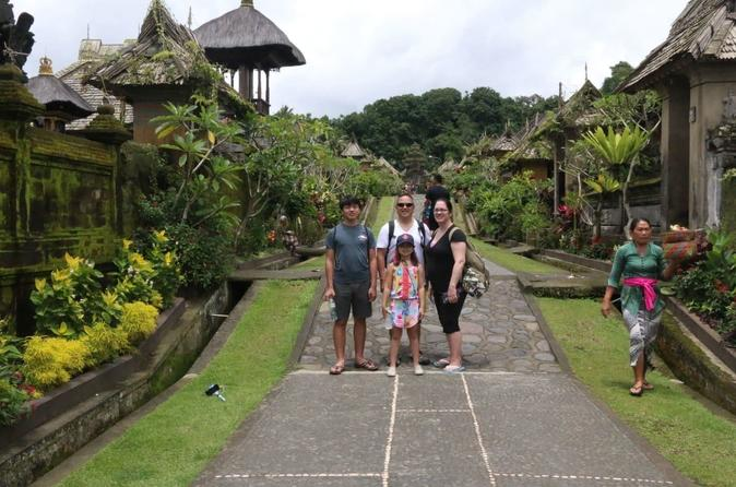 BALI PRIVATE TOUR TRADITIONAL VILLAGE AND WATERFALL THEN BEAUTIFUL VIRGIN BEACH - Ubud