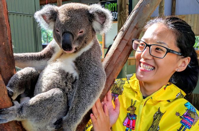 Wildlife Waterfalls and Wine Departing Sydney