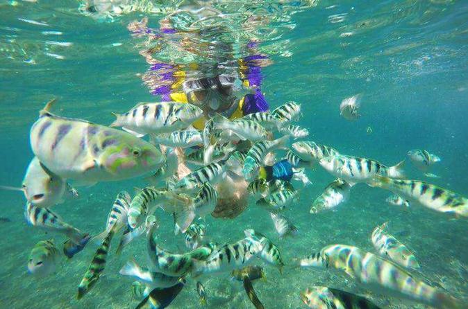 Snorkling At Amuk Bay Combination Heaven Gate, Tirta Gangga And Bat Temple - Kuta