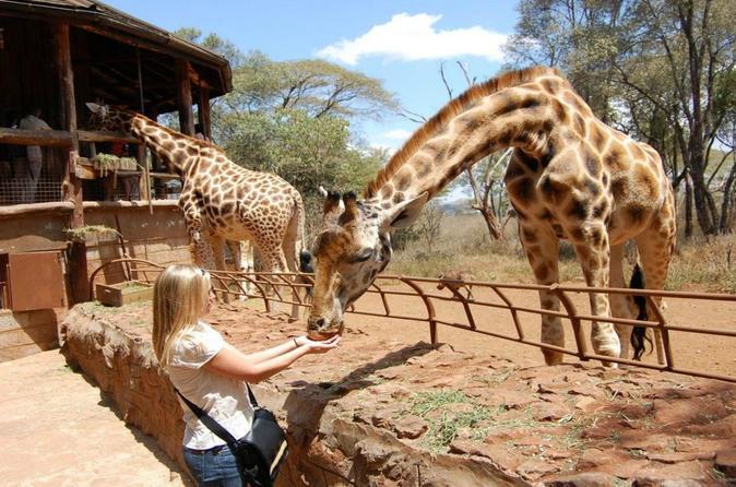 1 Day Excursion - Nairobi