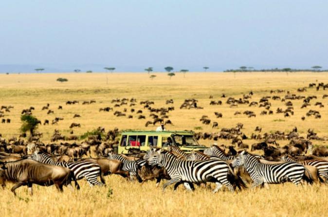 5 Days Wings Over The Rift Valley - Nairobi
