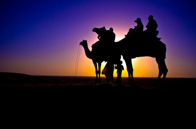 Sunset Camel Ride In Agadir With Transfers