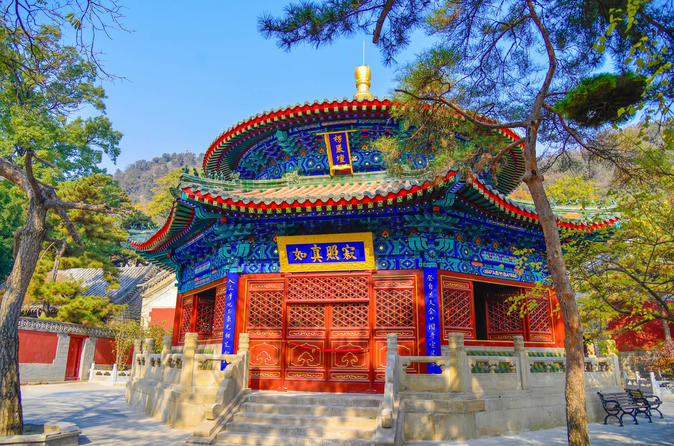 Private Trip To Tian'anmen Square Forbidden City And Hutong ,Temple Of Heaven - Beijing