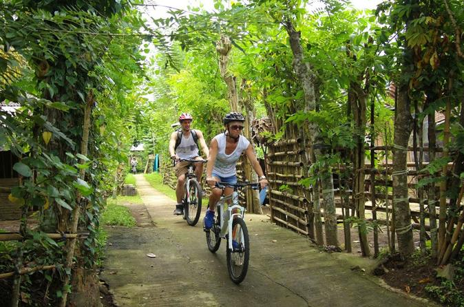 Bali Countryside Bike Tours - Ubud