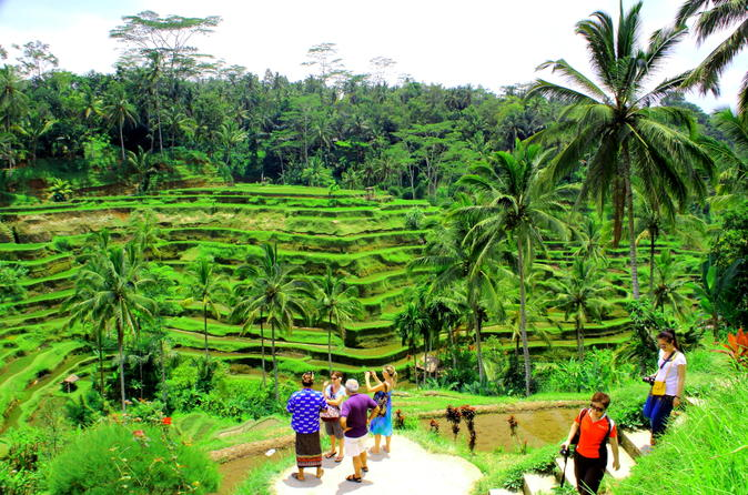Bali Full-Day Countryside Sightseeing Trip With Lunch - Ubud
