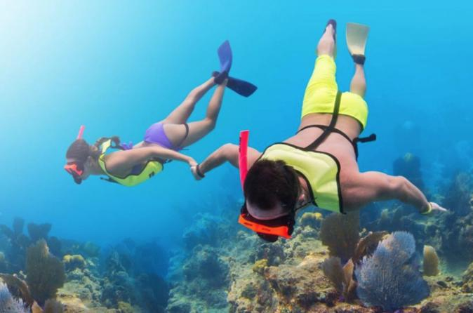 Key Largo Snorkeling Adventure