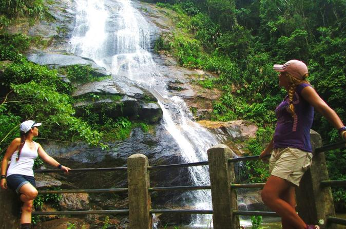 Visit The Tijuca Forest  World's Largest Urban Forest In Rio De Janeiro!