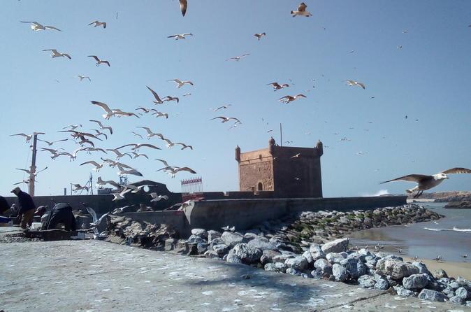 Day Trip And Excursion To Essaouira - Marrakesh