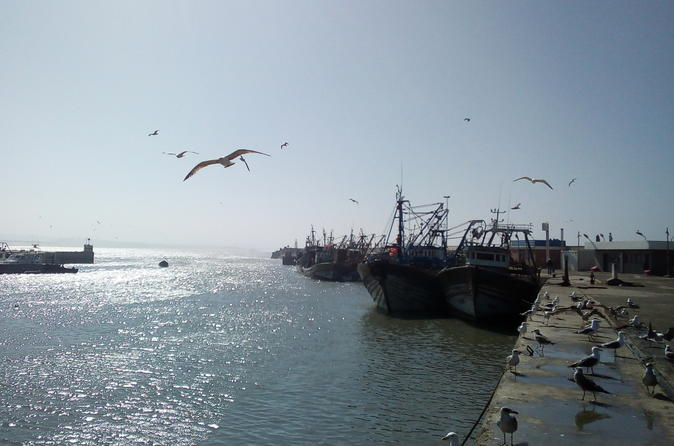 Day Trip To Essaouira - Marrakesh