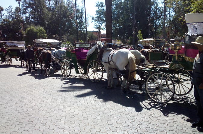 Private City Tour By Carriage - Marrakesh
