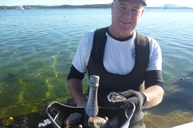 Coffin Bay Oyster Farm & Tasting Tour - Port Lincoln