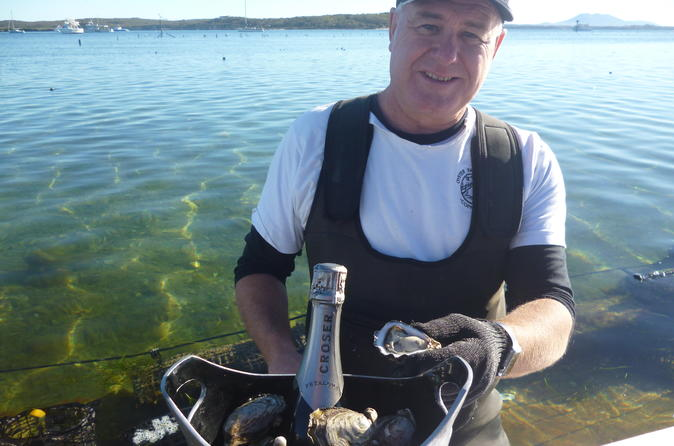 Oyster Farm & Tasting Tour- Hotel Pick-up And Return Transport From Port Lincoln
