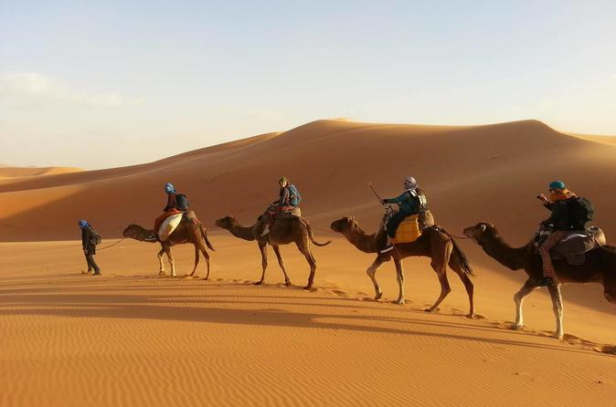 Desert Tour from Marrakech to Fez 3 Days 2 Nights