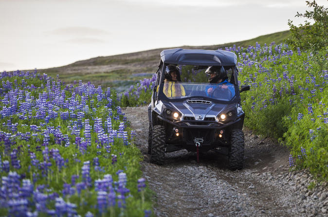 One-Hour Buggy Safari from Reykjavik