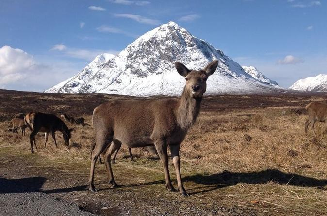 Glencoe, Loch Ness and The Highlands Tour from Edinburgh