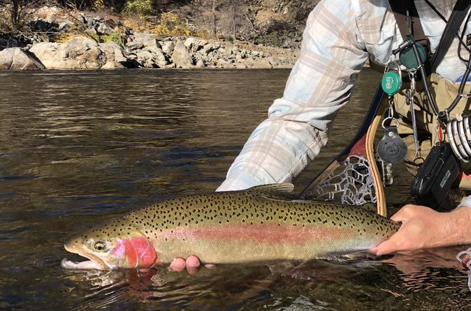 Experienced Angler's Private Full Day - Yosemite National Park