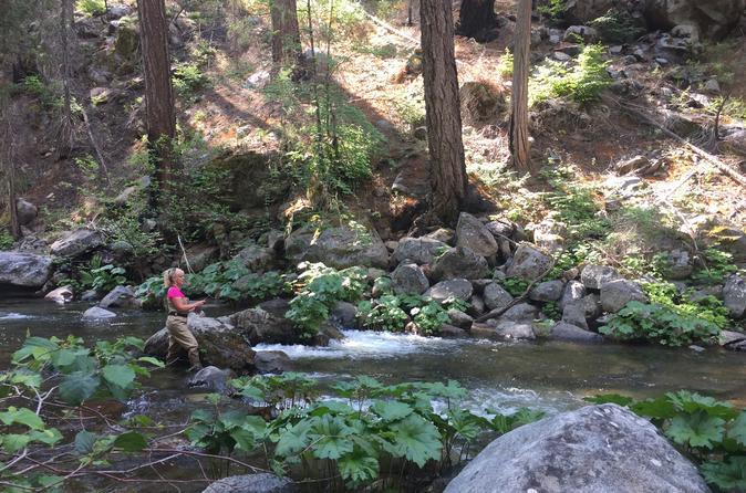 Experienced Angler's Private Half Day - Yosemite National Park