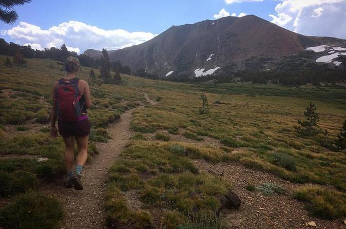 Yosemite Naturalist Hike To Mono Pass - Yosemite National Park