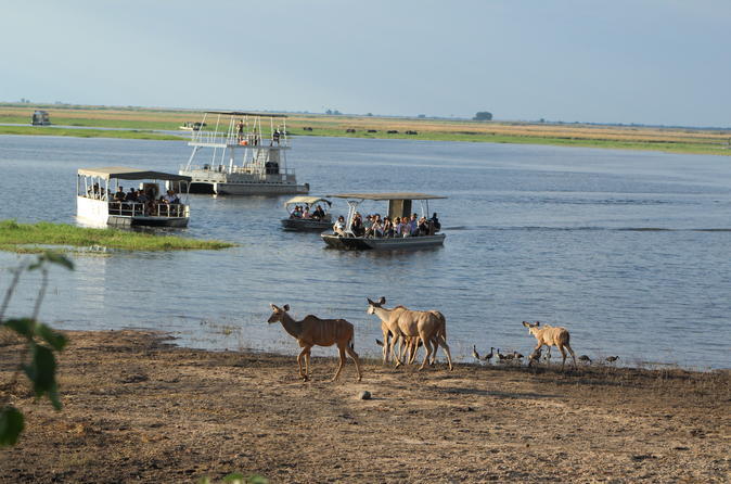 Full Day Game Drive Or Boat Cruise In The Chobe National Park River Front - Kasane