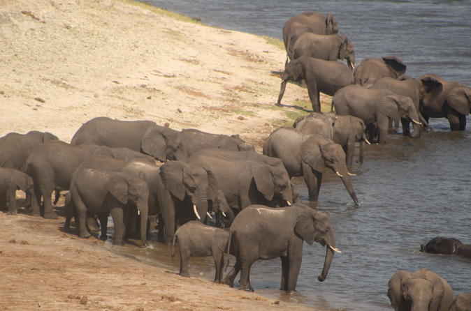 Luxury Mobile Tented Camping In Chobe National Park River Front - Kasane