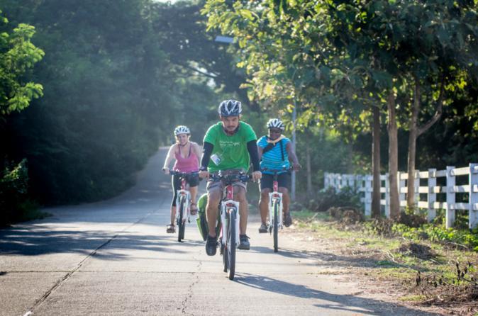 Active Bike Tour in Chiang Mai