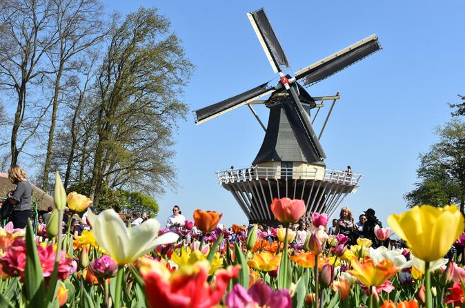 Day Trip to Keukenhof Garden and Flower Fields from Rotterdam