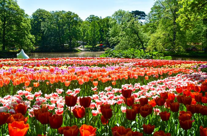 Keukenhof Gardens Day Trip from Amsterdam Including Guided Flower Fields Visit
