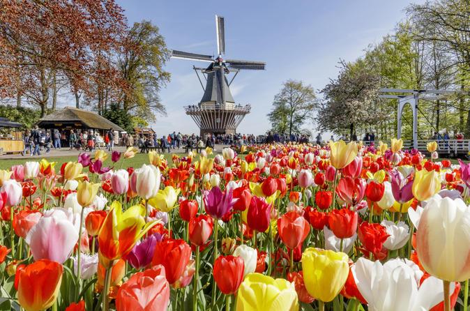 Passeio de um dia aos Jardins Keukenhof partindo de Amsterdã incluindo uma Visita Guiada pelos Campos Floridos