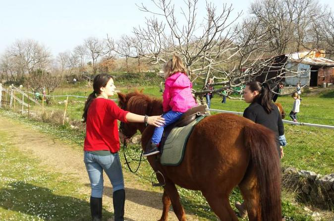 Horse Riding, Dubrovnik Panorama, Fun For Kids At Honey Valley Near Dubrovnik