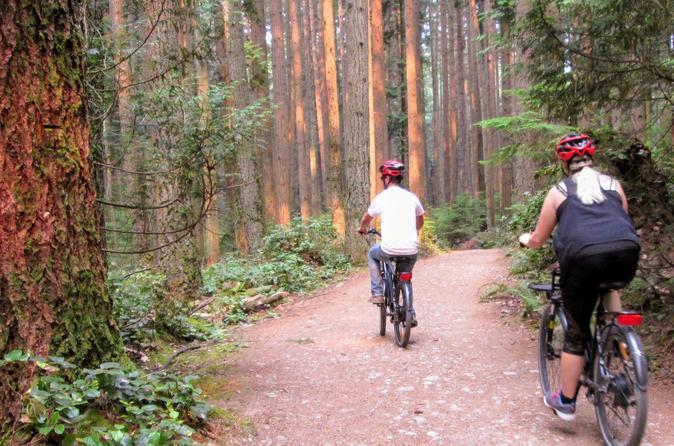 'Local' Vancouver E-Bike Adventure - Self-Guided With Picnic