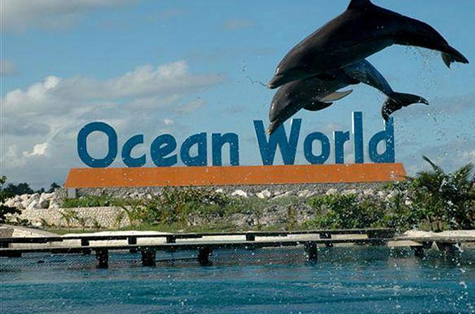 Ocean World Adventure Park Day Trip from Santo Domingo