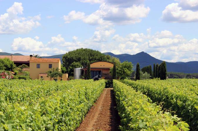 Bolgheri: Winery Tour With Wine Tasting In Terre Del Marchesato - Livorno