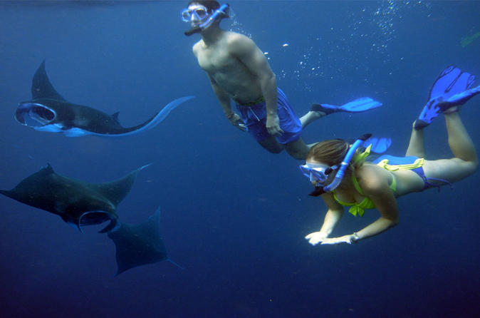Nusa Penida Island Tour With Snorkeling - Kuta
