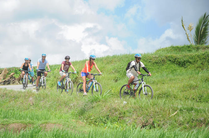 Jatiluwih Rice Paddy Cycling - True Bali Experience