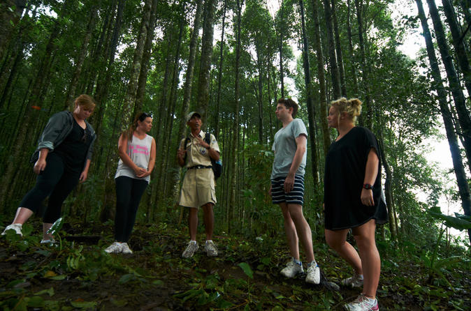 Rain Forest Trekking - True Bali Experience