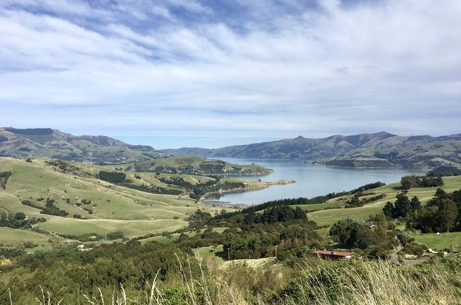 Akaroa And Banks Peninsula Private Day Tour From Christchurch