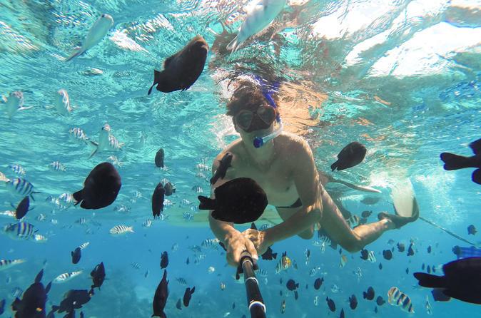 Pearl Islands Snorkeling Adventures