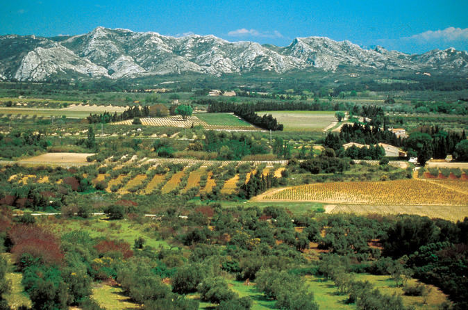 Alpilles Day Trip from Avignon Including St Rémy de Provence, Les Baux de Provence and Lunch