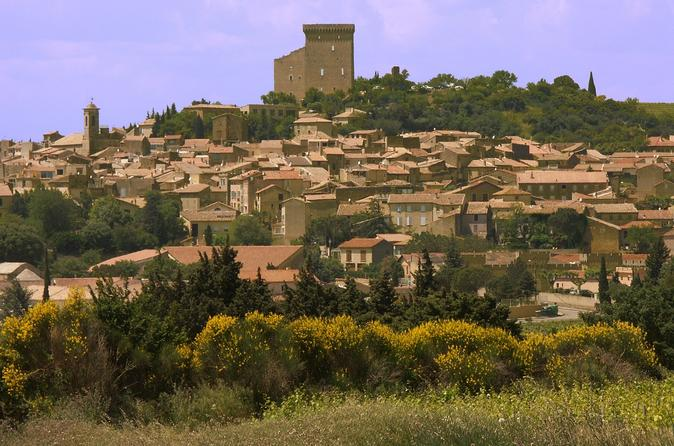 Grands Crus Wine Tasting and Vineyard Tour from Avignon