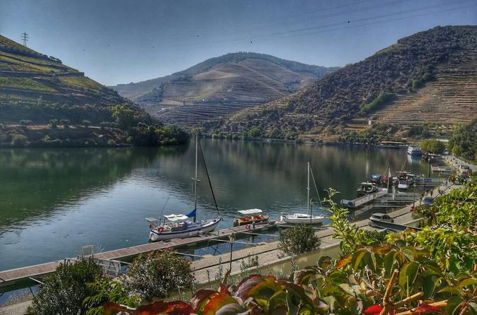 Douro Valley Tour With Visit And Tasting At  2 Port Wine Farms And Boat Cruise - Porto