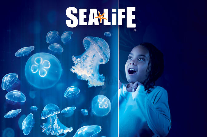 Sea life charlotte concord aquarium admission in charlotte 182804